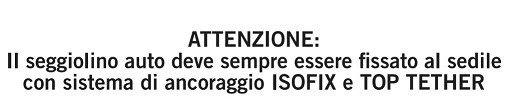 Citazione manuale d'istruzioni foppapedretti isodinamyk
